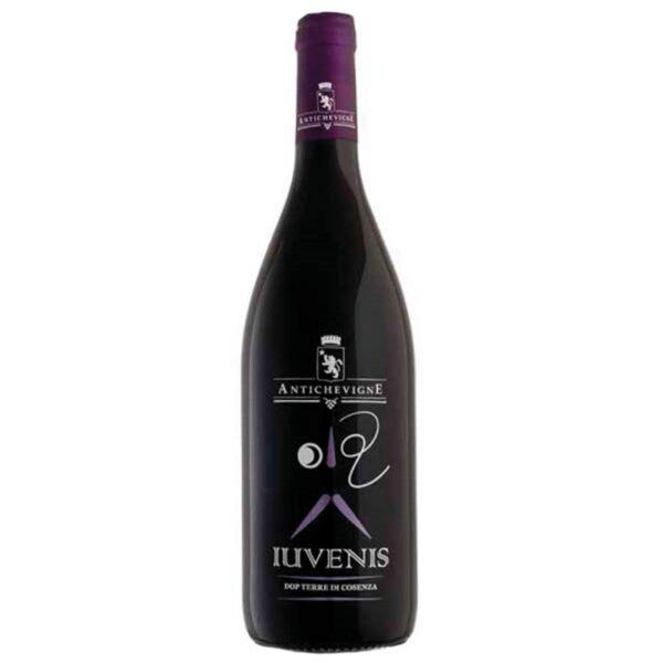 Antiche Vigne Iuvenis Vino Rosso Calabria Terre di Cosenza